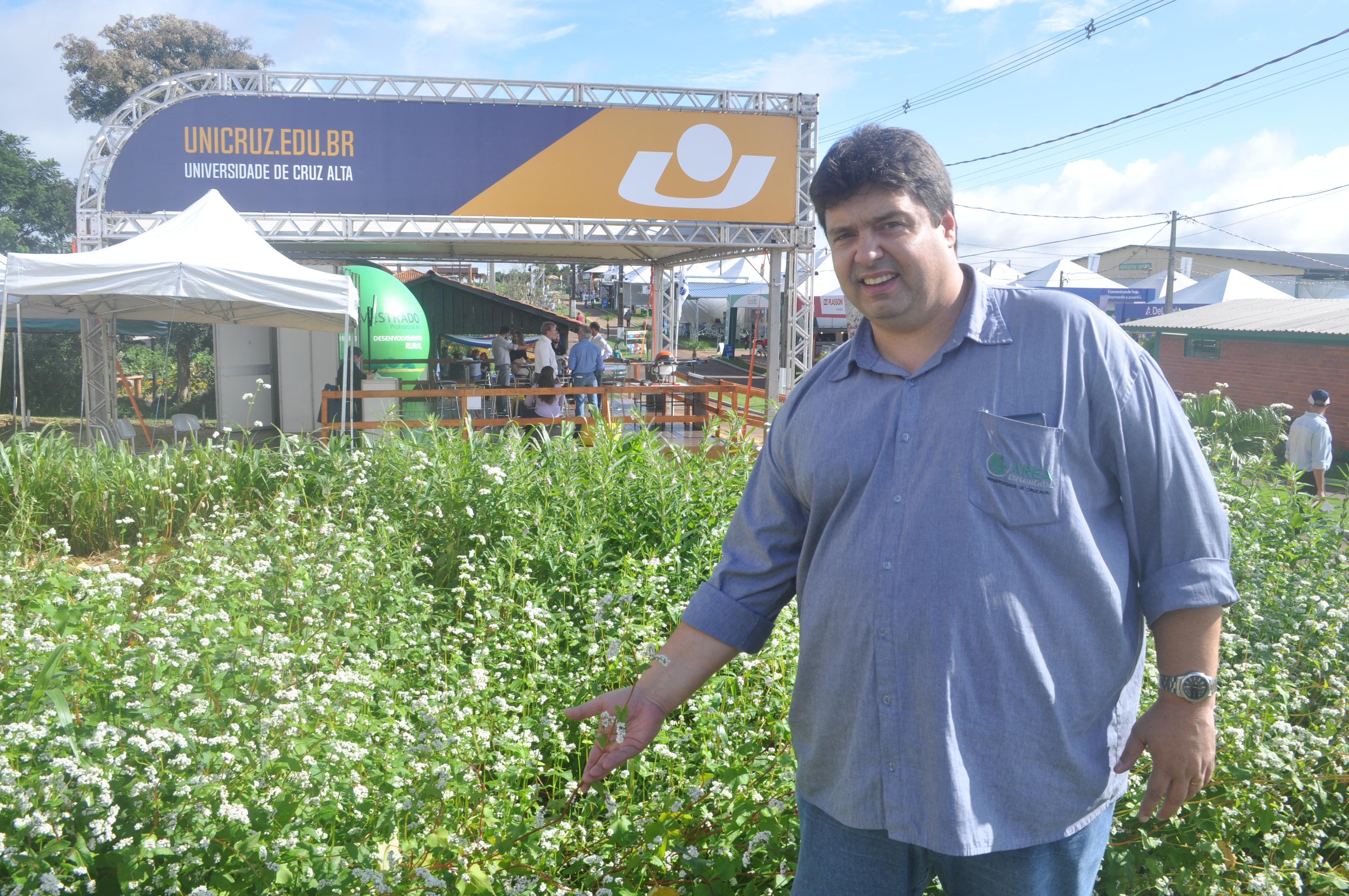Professor João Fernando Zamberlan apresenta as vantagens de plantar trigo mourisco